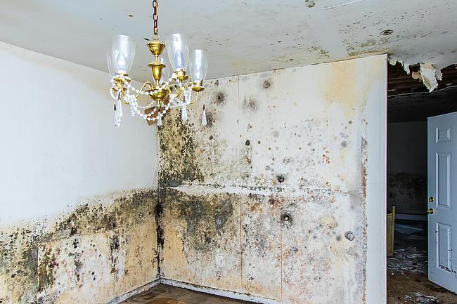 haus grund heinsberg vermieten. Black Bedroom Furniture Sets. Home Design Ideas